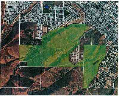 Pocatello Residential Lots & Land For Sale: Nna Bare Ground 210 Acres