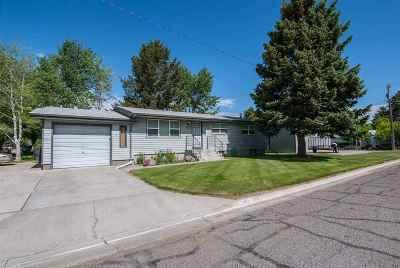 American Falls Single Family Home For Sale: 190 Bannock