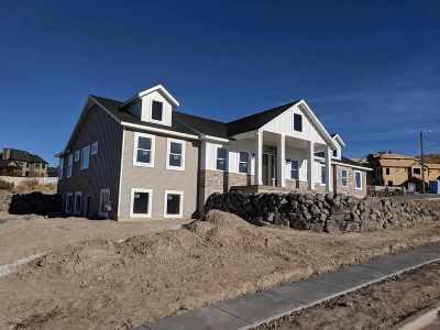 Pocatello Single Family Home For Sale: 3832 Ridgewood