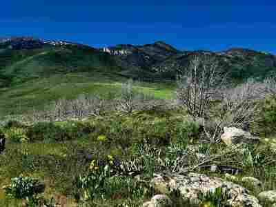 McCammon Residential Lots & Land For Sale: Crystal Springs Road