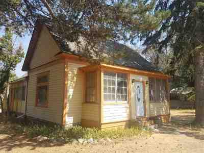 American Falls Single Family Home For Sale: 303 Van Buren St