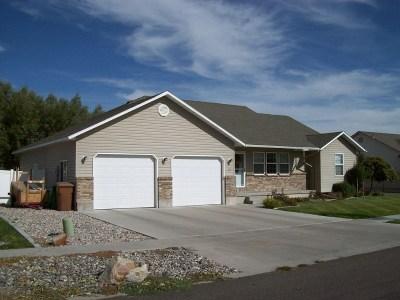 Chubbuck Single Family Home For Sale: 1012 Home Run St