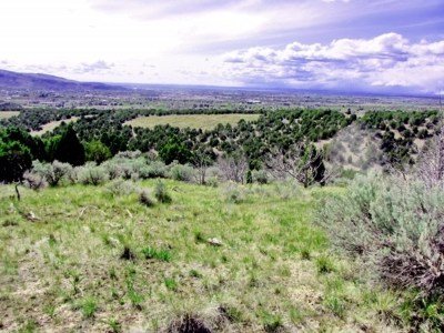 Pocatello Residential Lots & Land For Sale: Ridgewood