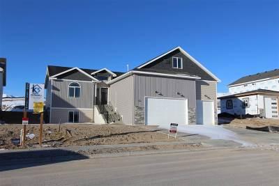 Pocatello Single Family Home For Sale: 1987 Magellan