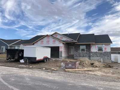 Pocatello Single Family Home For Sale: 849 Hallmark