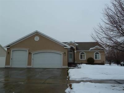 Pocatello Single Family Home For Sale: 2445 Coleman