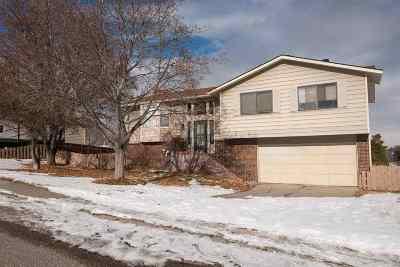 Pocatello Single Family Home For Sale: 2140 Horizon Drive