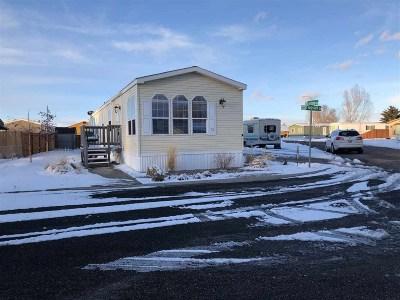 Pocatello Single Family Home For Sale: 4200 Philbin #83