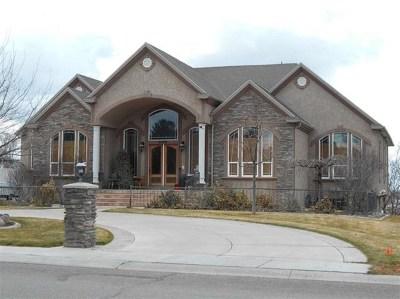 Chubbuck Single Family Home For Sale: 4859 Johannsen