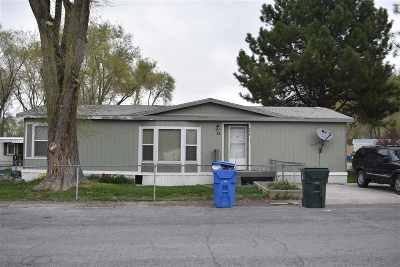 Pocatello Single Family Home For Sale: 4317 Opal