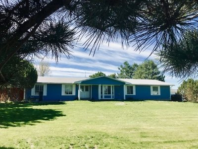 Pocatello Single Family Home For Sale: 11091 W 2 1/2 Mile Road