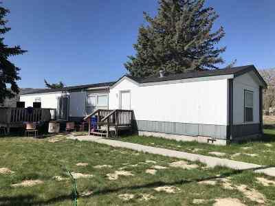 Pocatello Single Family Home For Sale: 10634 Philbin Road