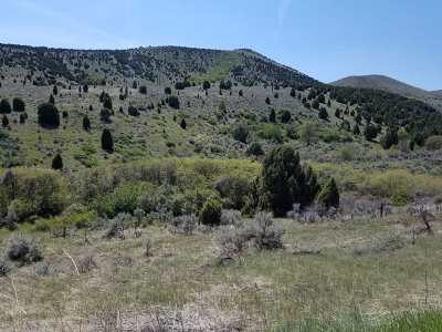 Pocatello Residential Lots & Land For Sale: W. Trail Creek