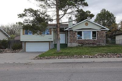 Pocatello Single Family Home For Sale: 2284 Douglas