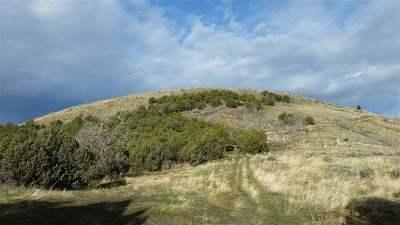 Pocatello Residential Lots & Land For Sale: 52 Acres Buckskin Road