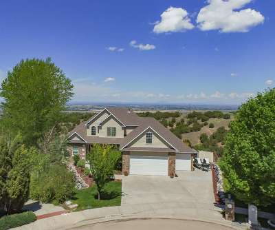 Pocatello Single Family Home Und Cont W/Cntg-Sell Home: 3506 Desert View Court