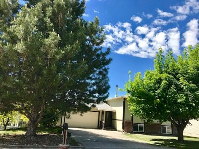 Pocatello Single Family Home For Sale: 1707 Glacier