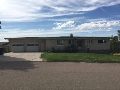American Falls ID Single Family Home For Sale: $229,000