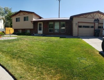 Pocatello Single Family Home For Sale: 2375 Loaine Circle