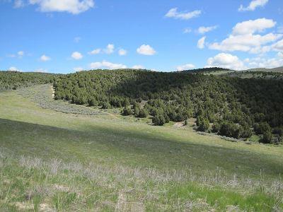 Pocatello Residential Lots & Land For Sale: Pocatello Creek