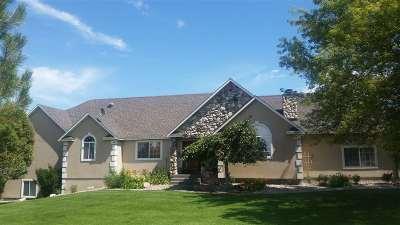 Pocatello Single Family Home For Sale: 9075 W Stoney Creek