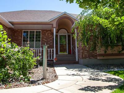 Pocatello Single Family Home For Sale: 3225 Summit Drive