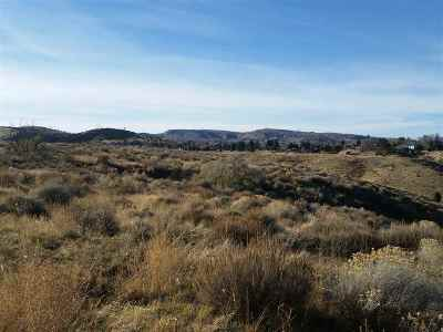 Pocatello Residential Lots & Land For Sale: 21.80 Acres W Clark Street