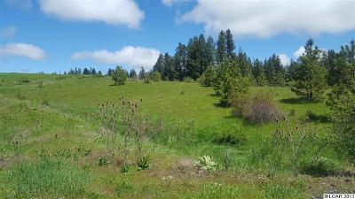 Kamiah Residential Lots & Land For Sale: Almost Heaven Sub Div Ii Lot 12