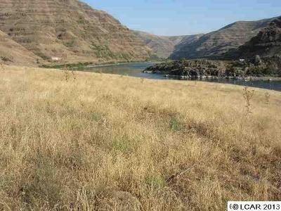 Asotin Residential Lots & Land For Sale: Parcel #13 Snake River Rd