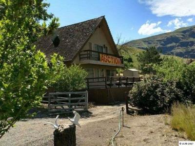 Asotin Single Family Home For Sale: 4800 Rogersburg Road