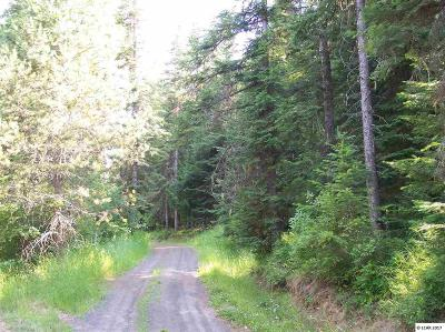 Peck, Pierce, Weippe Residential Lots & Land For Sale: 23 Aitken Road