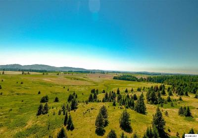 Peck, Pierce, Weippe Residential Lots & Land For Sale: 4140 Highway 11