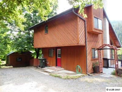 Orofino Single Family Home For Sale: 1385 Forsman Avenue