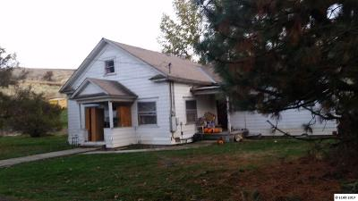 Asotin Single Family Home For Sale: 535 Costly Lane