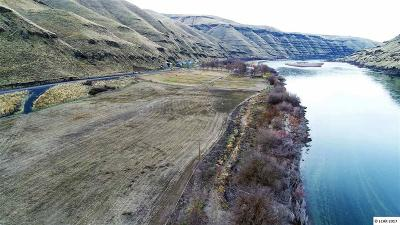 Asotin Residential Lots & Land For Sale: NNA Snake River Road