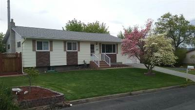 Lewiston Single Family Home For Sale: 3804 14th St E
