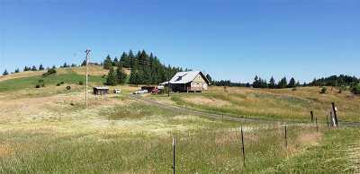Kamiah Single Family Home For Sale: 209 Shenandoah Drive