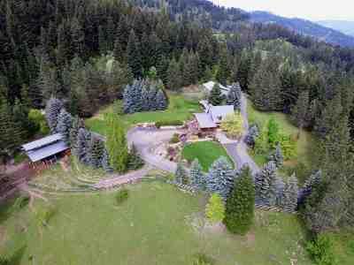Orofino Single Family Home For Sale: 4425 Gilbert Grade