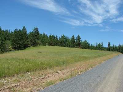 Lenore Residential Lots & Land For Sale: 4049 Freeman Creek Road
