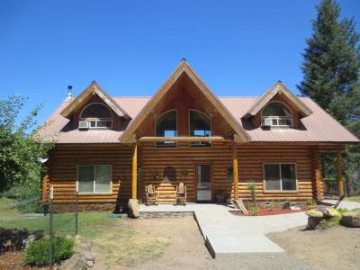 Orofino Single Family Home For Sale: 781 Grasser Lane
