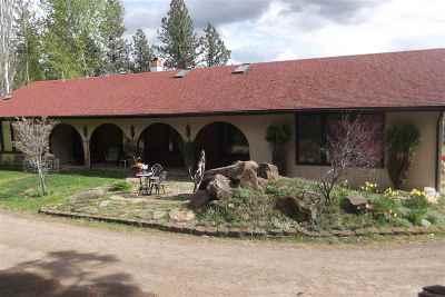 Orofino Single Family Home For Sale: 165 Horse Heaven Lane