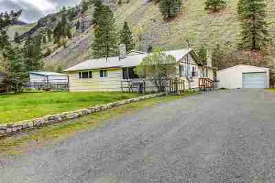 Riggins ID Single Family Home For Sale: $185,000