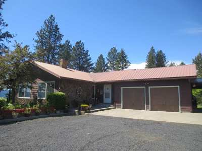 Orofino Single Family Home For Sale: 2971 Lakeview Road
