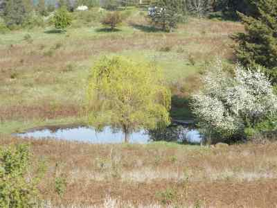 Peck, Pierce, Weippe Residential Lots & Land For Sale: Old Melrose Grade