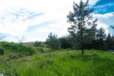 Peck, Pierce, Weippe Residential Lots & Land For Sale: Stolte Canyon Road