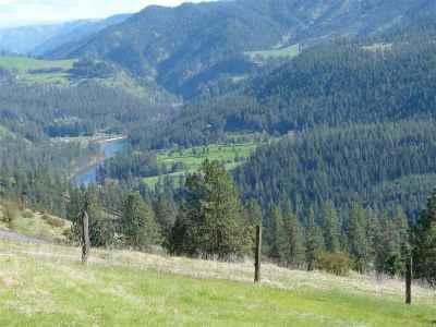 Orofino Residential Lots & Land For Sale: Grasser Lane