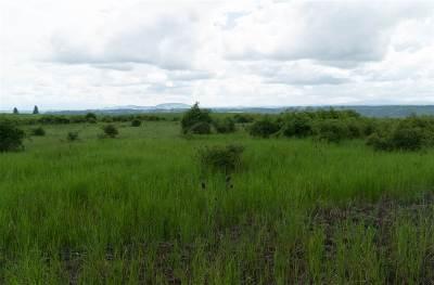 Kamiah Residential Lots & Land For Sale: Lot 11 Flying Elk