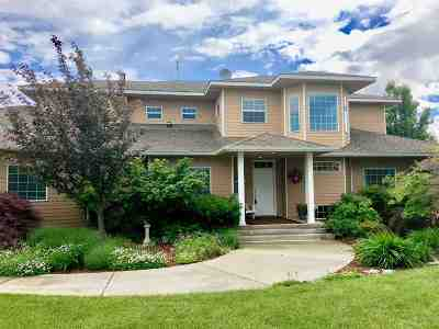 Lewiston, Clarkston Single Family Home For Sale: 1983 Rivercrest