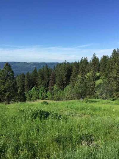 Orofino Residential Lots & Land For Sale: Brittany Lane