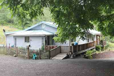Orofino Single Family Home For Sale: 1605 Harmony Heights Loop